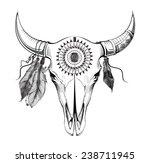 bull skull  | Shutterstock .eps vector #238711945