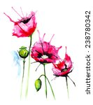 watercolor flowers | Shutterstock .eps vector #238780342
