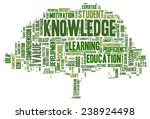 conceptual image of tag cloud... | Shutterstock .eps vector #238924498