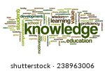 conceptual image of tag cloud... | Shutterstock .eps vector #238963006