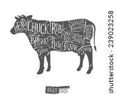 american cuts of beef  vintage... | Shutterstock .eps vector #239023258