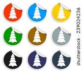 christmas tree. single flat... | Shutterstock . vector #239024236
