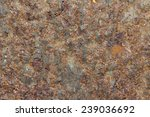 the beautiful wall from steel... | Shutterstock . vector #239036692