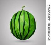 watermelon healthy fruit... | Shutterstock .eps vector #239100412