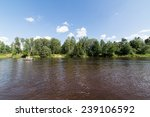 tourists enjoying water sports  ... | Shutterstock . vector #239106592