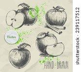 set of hand drawn apple.... | Shutterstock .eps vector #239117512