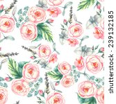 hand drawn watercolor floral... | Shutterstock .eps vector #239132185