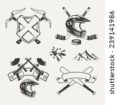 set of extreme sports emblems ... | Shutterstock .eps vector #239141986