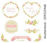 wedding graphic set  frames ... | Shutterstock .eps vector #239215468