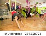 aerial yoga practicing   anti... | Shutterstock . vector #239218726