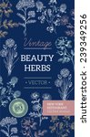 vintage beauty flower brochure. ... | Shutterstock .eps vector #239349256