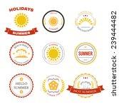summer design elements and... | Shutterstock . vector #239444482