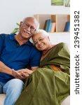 portrait of senior indian... | Shutterstock . vector #239451382