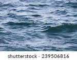 A Choppy Sea Full Of Waves.