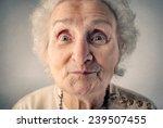 smiling grandmother  | Shutterstock . vector #239507455