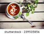 cup of tea with flowering... | Shutterstock . vector #239535856