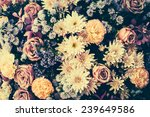 Vintage Old Flower Backgrounds...