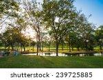 beautiful green park  public... | Shutterstock . vector #239725885