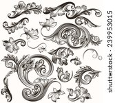 vector set of calligraphic... | Shutterstock .eps vector #239953015