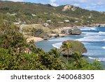 Bathsheba Bay  Barbados  Is...