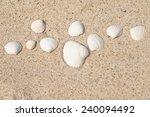 white shell in beige sand | Shutterstock . vector #240094492
