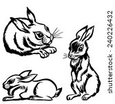 set of rabbits in the style of... | Shutterstock .eps vector #240226432