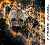 illustration of a spotted hyena ... | Shutterstock . vector #240258562
