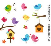 cute birds. design elements set.... | Shutterstock . vector #240266392