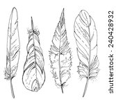 set of ornamental feathers.... | Shutterstock .eps vector #240428932