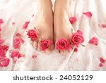 valentine spa composition | Shutterstock . vector #24052129