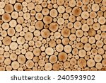 Round Teak Wood Stump Background