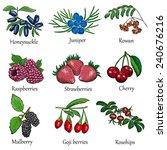 berries set   Shutterstock .eps vector #240676216