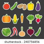 vegetable flat icon set. the... | Shutterstock .eps vector #240756856