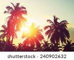 Tropical Beach At Sunset. Palm...