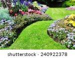 grass pathway and flowerbed in... | Shutterstock . vector #240922378