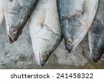 fresh grouper fish in ice for... | Shutterstock . vector #241458322