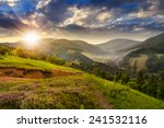 composite mountain landscape. flowers on hillside meadow near village in foggy mountain  forest in sunset light - stock photo