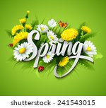 fresh spring background with... | Shutterstock .eps vector #241543015