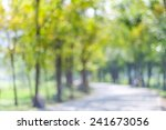 blurred park with bokeh light ...   Shutterstock . vector #241673056