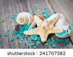 close up of seashells on old... | Shutterstock . vector #241707382