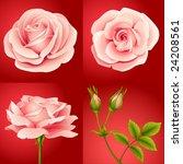 vector roses set red | Shutterstock .eps vector #24208561