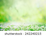 spring natural background | Shutterstock . vector #242240215