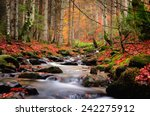 Autumn River In The Mountains
