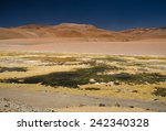 atacama | Shutterstock . vector #242340328