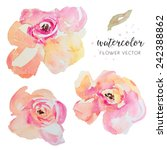 watercolor vector flowers.... | Shutterstock .eps vector #242388862