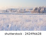 Rural Winter Landscape With...