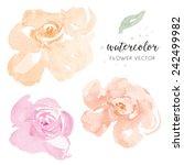 Stock vector pink and orange vector watercolour flowers watercolor vector flowers 242499982