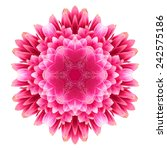 Flower Mandala Isolated On...