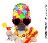 fawn french bulldog dog ready... | Shutterstock . vector #242612842
