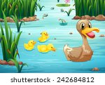 Illustration Of Ducks Swimming...